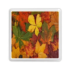 Colorful Autumn Leaves Leaf Background Memory Card Reader (square)  by Amaryn4rt