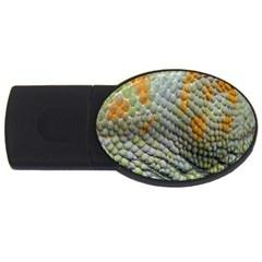 Macro Of Chameleon Skin Texture Background Usb Flash Drive Oval (2 Gb)