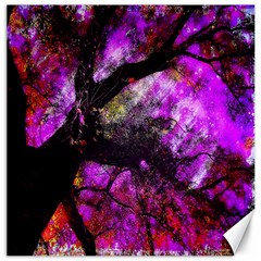 Pink Abstract Tree Canvas 16  X 16   by Nexatart