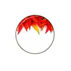 Abstract Autumn Background Bright Hat Clip Ball Marker (4 Pack) by Nexatart
