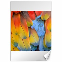 Spring Parrot Parrot Feathers Ara Canvas 12  X 18   by Nexatart
