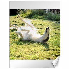 Borzoi Enjoying Sun Canvas 36  X 48   by TailWags