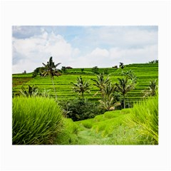Bali Rice Terraces Landscape Rice Small Glasses Cloth (2 Side) by Nexatart