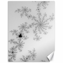 Mandelbrot Apple Males Mathematics Canvas 18  X 24   by Nexatart