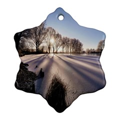 Winter Lake Cold Wintry Frozen Snowflake Ornament (two Sides)