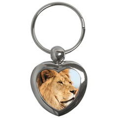 Big Male Lion Looking Right Key Chains (heart)  by Ucco