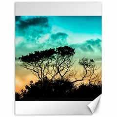 Trees Branches Branch Nature Canvas 12  X 16   by Celenk