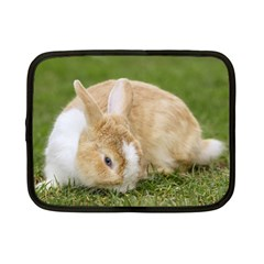 Beautiful Blue Eyed Bunny On Green Grass Netbook Case (small)  by Ucco