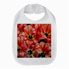 Tulips Flowers Spring Amazon Fire Phone by BangZart