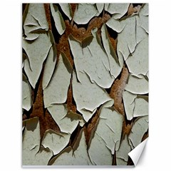 Dry Nature Pattern Background Canvas 18  X 24