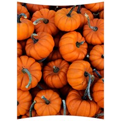 Pumpkins 2 Back Support Cushion by trendistuff