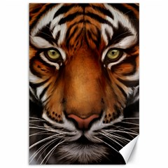 The Tiger Face Canvas 12  X 18   by Samandel