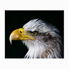 Bald Eagle Portrait  Small Glasses Cloth (2 Side) by goodart