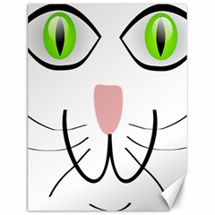 Cat Green Eyes Happy Animal Pet Canvas 12  X 16   by Sapixe