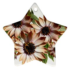 Sun Daisies Leaves Flowers Star Ornament (two Sides) by Celenk