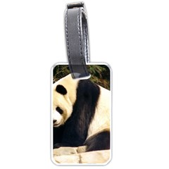 Giant Panda National Zoo Luggage Tag (one Side) by rainbowberry