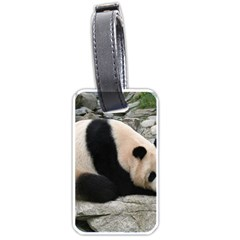 Giant Panda Water Luggage Tag (one Side) by rainbowberry