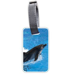 Swimming Dolphin Luggage Tag (one Side) by knknjkknjdd